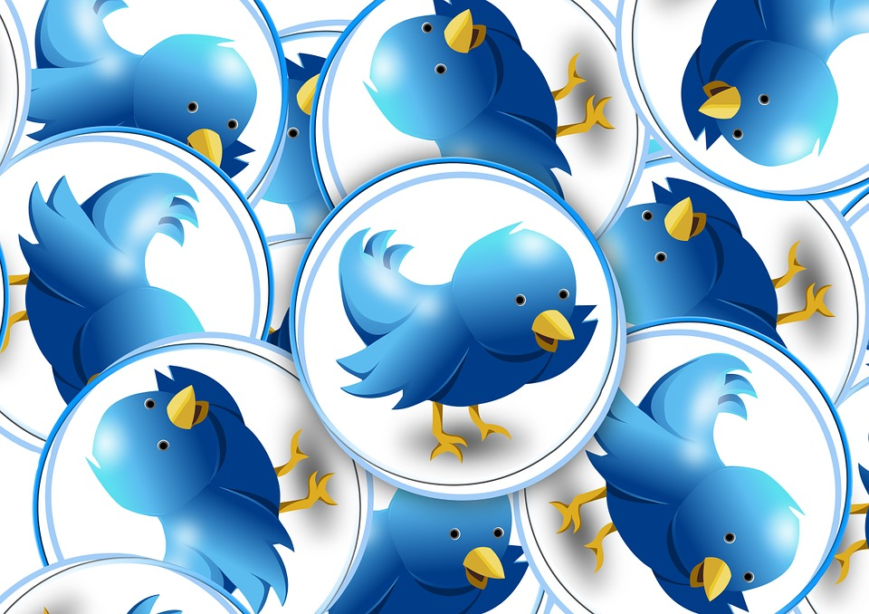 The Twitter Algorithm: What You Need to Know to Boost Organic Reach